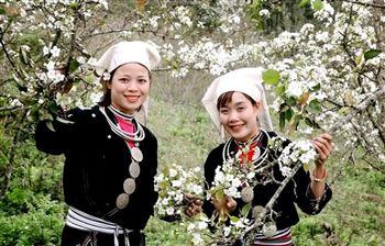 Tour Na Hang – Hồng Thái Mùa Hoa Lê 2 ngày 1 đêm