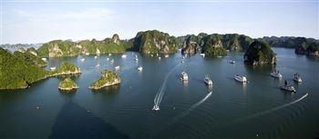 Tour Hạ Long (51 Tour)