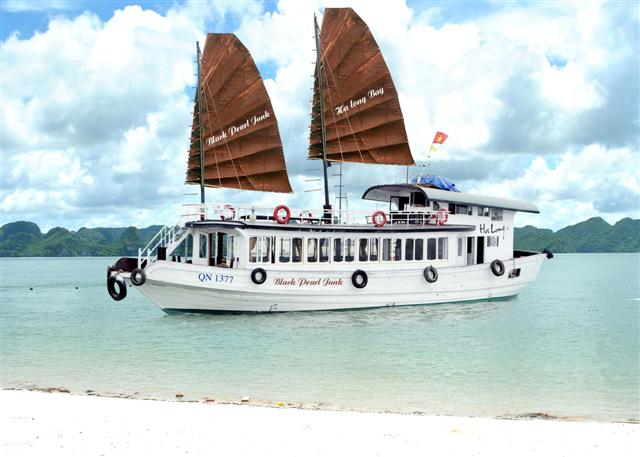 Image result for Wonderbay Cruises.