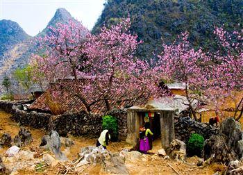 Tour Hà Giang 2 ngày 3 đêm